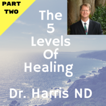 The 5 Levels of Healing In Gut Health – Part Two