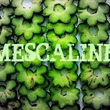Mescaline Drive - 笑いっぱなしの島