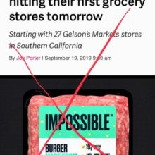Impossible Burger = The Ecoside Burger